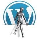 Полезные плагины для wordpress. Описание