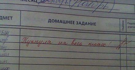 Смешные записи в дневниках.