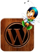 безопасности вашего блога или веб сайта