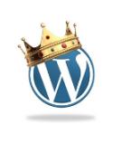 Как вывести название категории (рубрики) в WordPress (вордпресс) на странице?