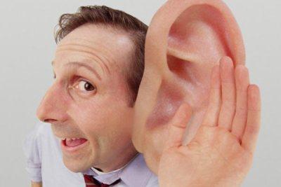 Слух – способность воспринимать звук органами слуха.
