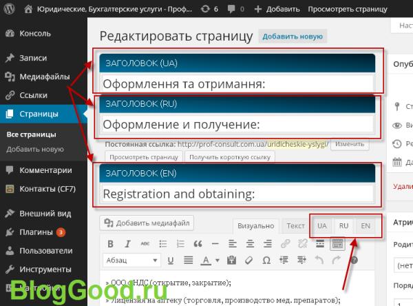 Как сделать сайт на нескольких языках? Многоязычность сайта
