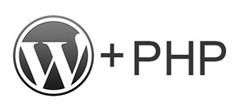 Как вставить php-код в WordPress на страницу или запись