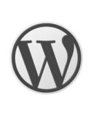 Как создать дополнительные поля на WordPress для статей и страниц