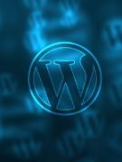 Как вывести последние записи из определенной категории на WordPress