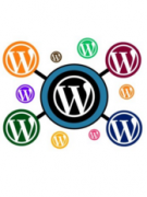 Добавляем дополнительные поля в профиль пользователя WordPress