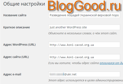 Как вывести из пункта «Настройки» «Общие настройки» для WordPress