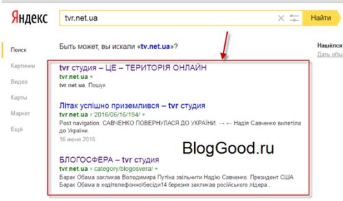 Владелец сайта предпочел скрыть описание страницы WordPress